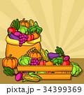 収穫 実り ベジタブルのイラスト 34399369