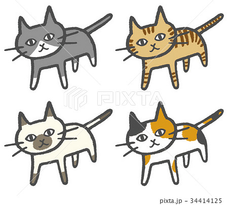 猫4匹 34414125