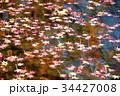 水面に浮かぶ紅葉 34427008