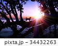 湖畔の夜明けと犬のシルエット 34432263