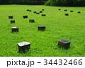 深大寺城址公園のアートな柱跡 34432466