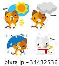 猫 三毛猫 天気予報のイラスト 34432536