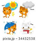猫 トラ猫 天気予報のイラスト 34432538
