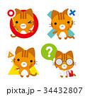 猫 トラ猫 正解のイラスト 34432807