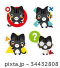 猫 黒トラ 正解のイラスト 34432808