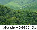 山 森 森林の写真 34433451
