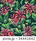 フラワー 花 フローラルのイラスト 34441642