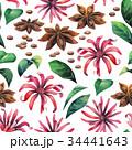 フラワー 花 フローラルのイラスト 34441643