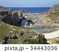 小笠原諸島 風景 世界自然遺産の写真 34443036