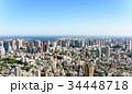 東京 都会 日中の写真 34448718