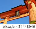 宮島 鳥居 厳島神社の写真 34448949