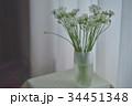 花 ニラ 花瓶の写真 34451348