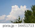 雲 空 青空の写真 34451713