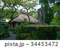 西郷隆盛 奄美大島龍郷町の屋敷跡と石碑 34453472
