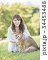 柴犬 女性 公園の写真 34453488