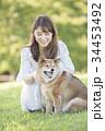 柴犬 女性 若いの写真 34453492