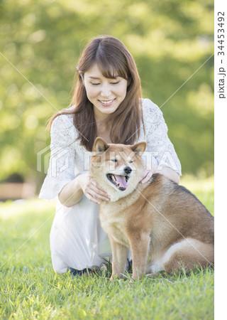 若い女性と柴犬 34453492