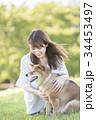 柴犬 女性 若いの写真 34453497