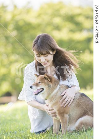 若い女性と柴犬 34453497