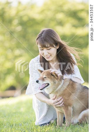 若い女性と柴犬 34453507
