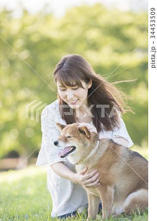 若い女性と柴犬 34453509
