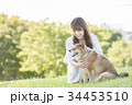 柴犬 女性 若いの写真 34453510