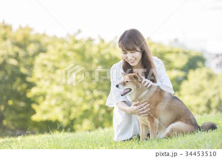 若い女性と柴犬 34453510