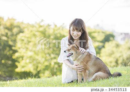 若い女性と柴犬 34453513