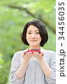 自動車 ミニカー 新緑の写真 34456035