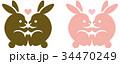 うさぎ 動物 カップルのイラスト 34470249