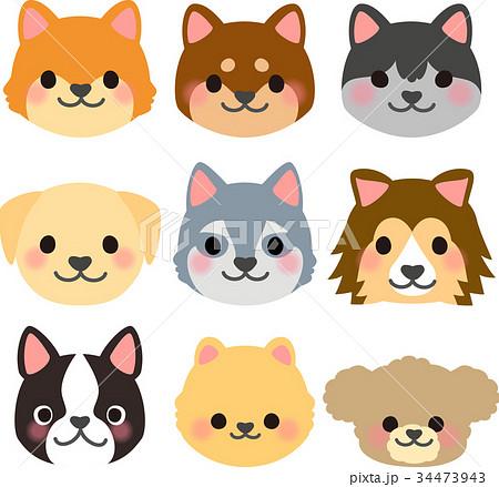 いろいろな犬の顔のイラストセットのイラスト素材 34473943 Pixta