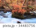 奥入瀬渓流 渓流 秋の写真 34483756