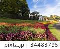 秋のイベントの花壇 34483795