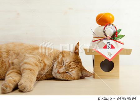 猫と鏡餅 34484994