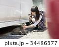女子高生 猫 登下校 34486377
