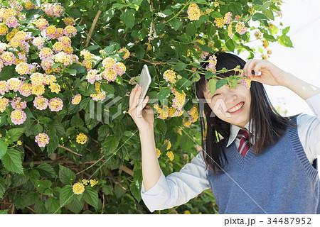 女子高生 スマートフォン 花 撮影 34487952