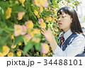 女子高生 花 高校生の写真 34488101
