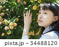 女子高生 花 高校生の写真 34488120