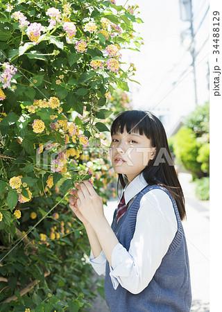 女子高生 花 ポートレート 34488129
