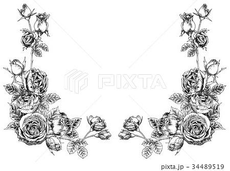 ボールペンで描いたバラのフレーム素材のイラスト素材 34489519 Pixta