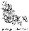 ペン画 フレーム 花のイラスト 34489523