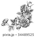 ペン画 フレーム 花のイラスト 34489525