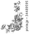 ペン画 フレーム 花のイラスト 34489595