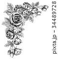 ペン画 フレーム 花のイラスト 34489728