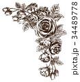 ペン画 フレーム 花のイラスト 34489778