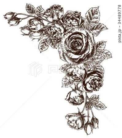 ボールペンで描いたバラのフレーム素材 34489778