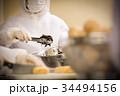 給食、弁当の製造 34494156