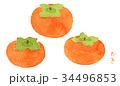 柿 かき フルーツのイラスト 34496853