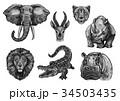 動物 アフリカ産 ワイルドのイラスト 34503435
