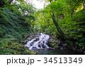 渓流 清流 阿弥陀ヶ滝の写真 34513349